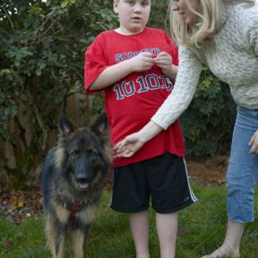 Dog vs. school district lawsuit remains unresolved
