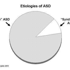 016 Known causes of ASD
