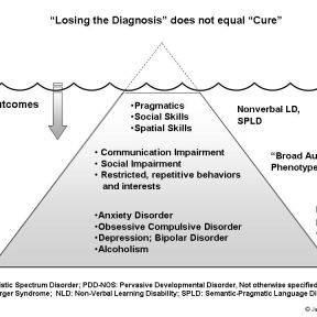 "017 Losing the ASD diagnosis does not equal ""Cure"""