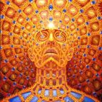 The Enigma of Human Consciousness