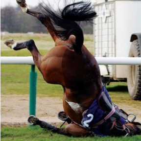 Horse Racing: Cruelties We Condone and Cruelties We Condemn