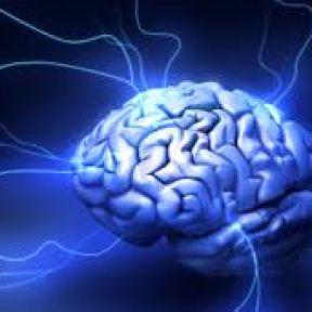 How Do Brains Age?