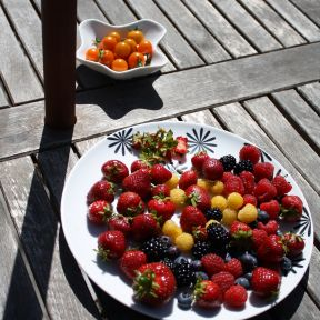 Summer's Bounty: Healthy Family Meals