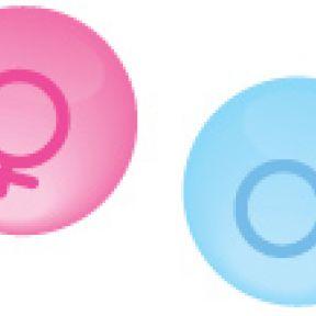 Sex Selection Game-Changer? New Fetal Gene Test Reveals Sex at 7 Weeks