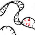 Love is in Your Genes