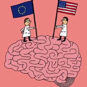Making Sense of the Brain