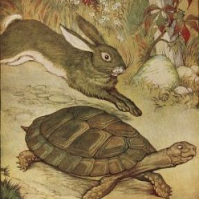 Are You a Tortoise or a Hare? About Work