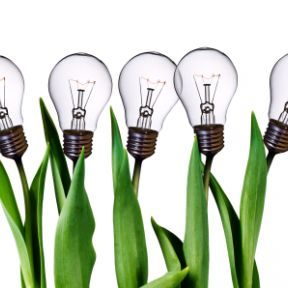 Growing Ideas is a Process, Not a Lightning Bolt