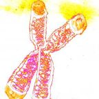 dr. peter bongiorno, daughter's crayons on paper