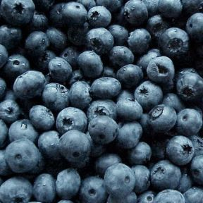 Eat Blueberries, Remember More?