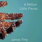 http://www.mediabistro.com/unbeige/a-million-little-princes-richard-prince-to-design-cover-of-james-freys-new-book_b4689