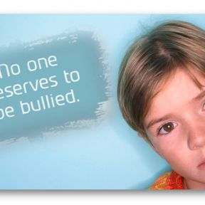 No Child Left Behind: Safe Schools Improvement Act of 2011