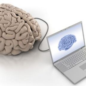 What Psychology Tells Us About the Brain and Vice Versa Part I: An Intro to Cognitive Neuroscience 2.0