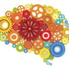 Brain Injury Study Points to Integrative Nature of Intelligence