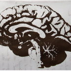 Picking the Right Brain State for the Job
