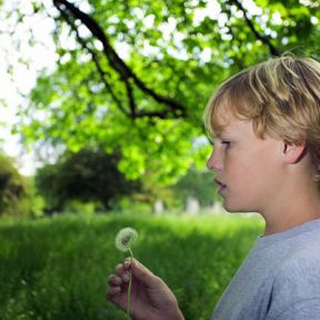 Can People with Autism Learn Implicitly?