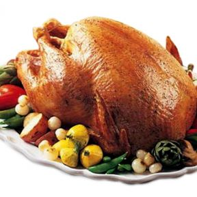Turkey Day: Fact or Fiction?