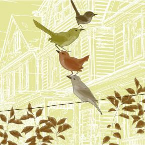 Facing the Hard Questions, Bird by Bird