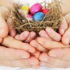"""Bird's Nest"" Co-Parenting Arrangements"