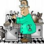 The Would-Be Veterinarian
