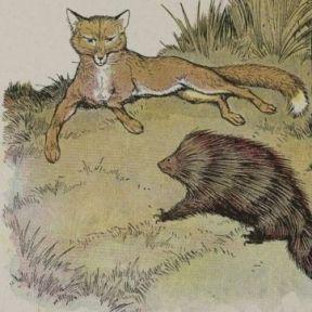 Your Social Life: Are You a Fox or a Hedgehog?