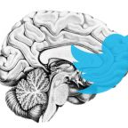The Neuroanatomy of a Retweet