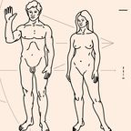 Similarities between the sexes can be as important as differences