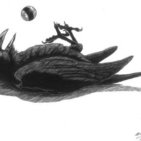Crow Playmates
