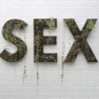 "What Does It Mean to ""Make Sex Normal""?"