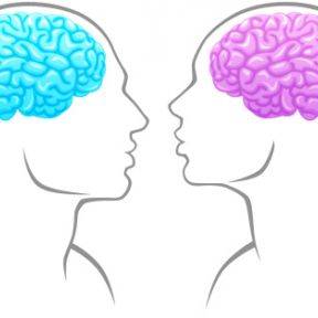 Two Myths and Three Facts About the Differences in Men and Women's Brains