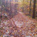 Walking the Inner Terrain
