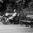 Old man lonely in the park