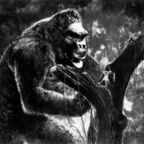 "RKO Publicity Photo, ""King Kong"" 1933"