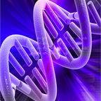 DNA Double Helix/Andrea Laurel/CC BY 2.0