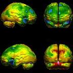 neurospectofflorida.com