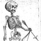 """Foetal skeleton with bow and arrow, 17th century"" / CC"