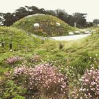 Rooftop Greenspace at California Academy of Sciences Emily Deans
