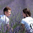 """Lavender Couple"" Pixabay / Public Domain"