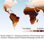 Skin Color Map: Source: United Nations Environmental Program