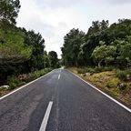 Empty road, Andres Nieto Porras, Wikimedia Commons
