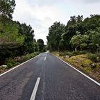 Empty road, Andres Nieto Porras, Wikimedia Commons