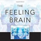 Feeling Brain Book/Johnston&Olson, used with permission