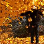 Shutterstock ID 135632558